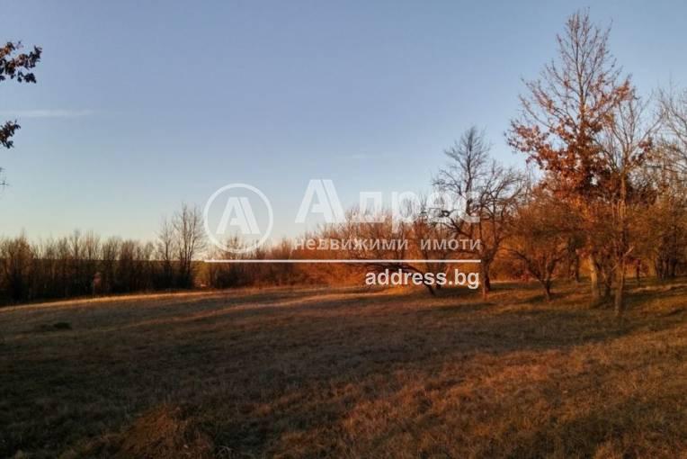 Къща/Вила, Велчево, 490077, Снимка 2