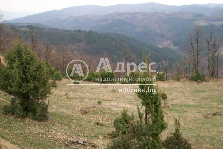 Земеделска земя, Горно Хърсово, 152082, Снимка 3