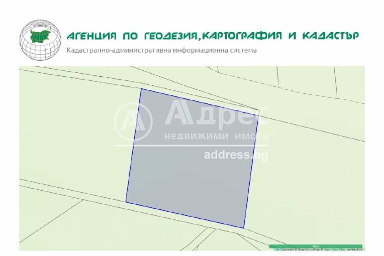 Земеделска земя, Дъбрава, 247099, Снимка 2