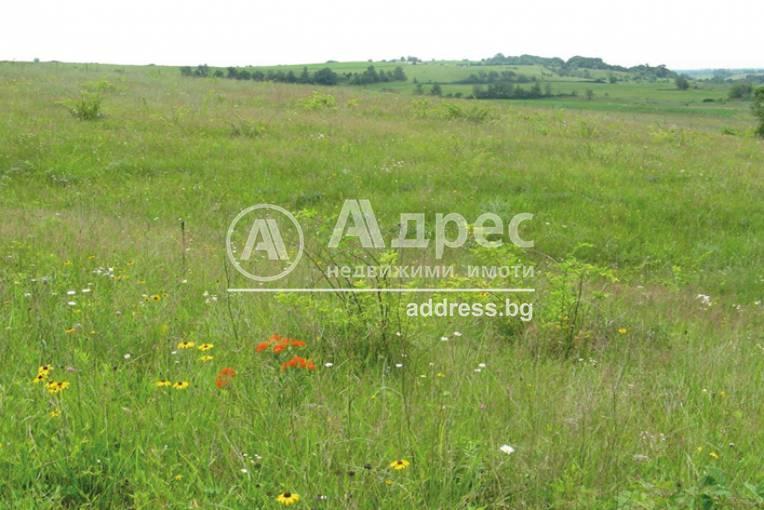 Парцел/Терен, Пловдив, Индустриална зона - Север, 449146, Снимка 1