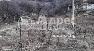 Земеделска земя, Благоевград, Еленово, 473202, Снимка 1