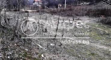 Земеделска земя, Благоевград, Еленово, 473202, Снимка 3
