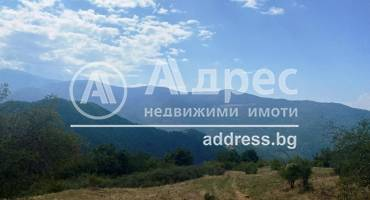 Земеделска земя, Падала, 217250, Снимка 1