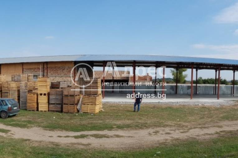 Стопанска сграда/Ферма, Полски Тръмбеш, 311289, Снимка 1