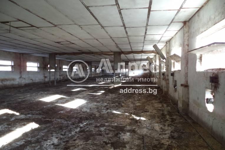 Стопанска сграда/Ферма, Присово, 230304, Снимка 3