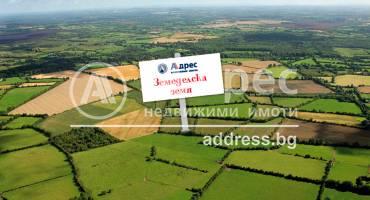 Земеделска земя, Анево, 307429, Снимка 1