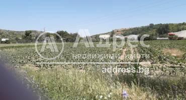 Земеделска земя, Бучино, 453441, Снимка 1