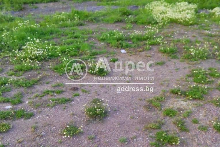 Земеделска земя, Зимница, 301487, Снимка 2