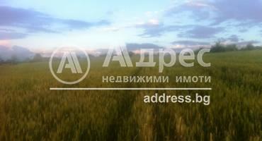 Земеделска земя, Покровник, 312491, Снимка 1