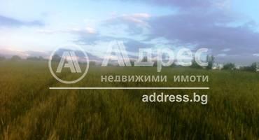 Земеделска земя, Покровник, 312491, Снимка 2