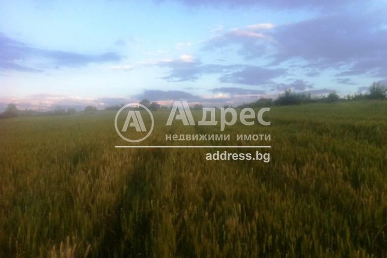 Земеделска земя, Покровник, 312491, Снимка 3