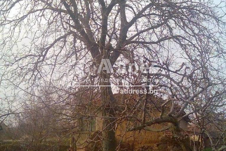 Къща/Вила, Лесово, 148494, Снимка 2