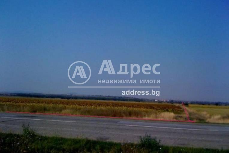 Земеделска земя, Тенево, 123517, Снимка 2