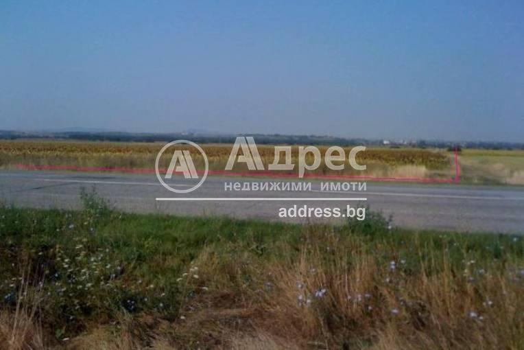 Земеделска земя, Тенево, 123517, Снимка 3