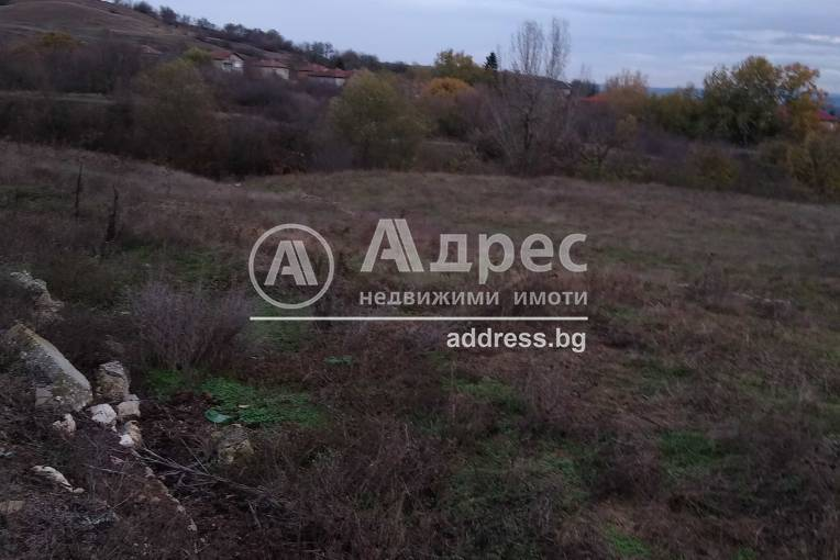 Парцел/Терен, Игнатиево, 470548, Снимка 2