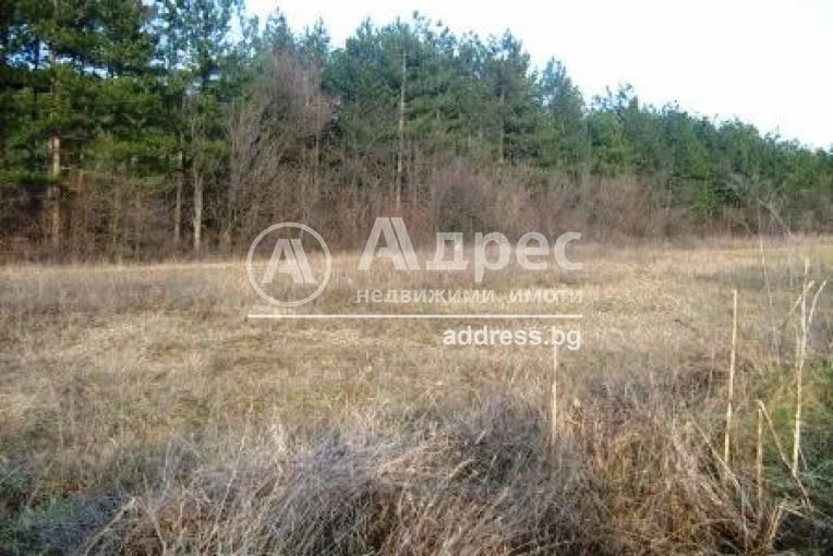 Земеделска земя, Присово, 92621, Снимка 2