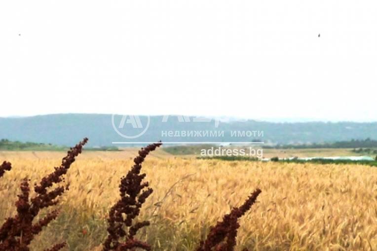Парцел/Терен, Игнатиево, 218623, Снимка 1