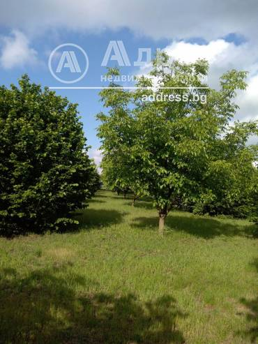 Парцел/Терен, Крушари, 459633, Снимка 1