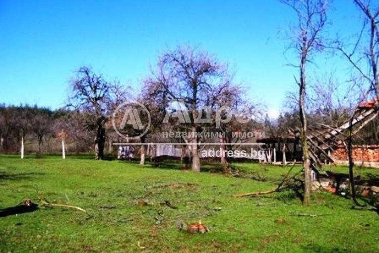 Къща/Вила, Стара река, 45703, Снимка 2