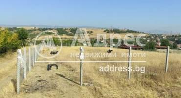 Земеделска земя, Изгрев, 523754, Снимка 1
