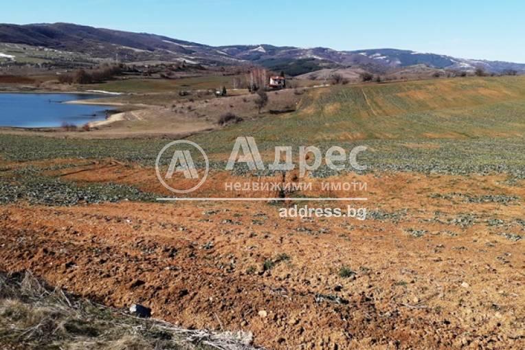 Земеделска земя, Логодаж, 475787, Снимка 2