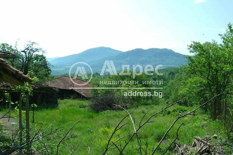 Къща/Вила, Елена, 119797, Снимка 3