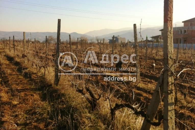 Земеделска земя, Благоевград, Баларбаши, 255798, Снимка 2