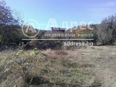Парцел/Терен, Богомилово, 433807, Снимка 1