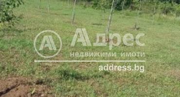 Парцел/Терен, Къпиново, 455812, Снимка 3