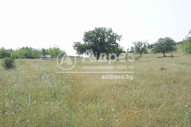 Парцел/Терен, Стара Загора, Голеш, 81814, Снимка 1
