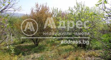 Парцел/Терен, Джигурово, 241819, Снимка 3