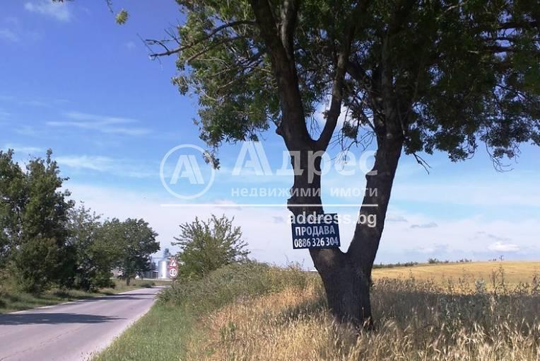 Парцел/Терен, Игнатиево, 400882, Снимка 1