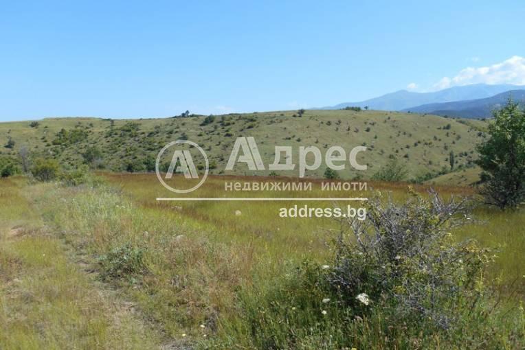 Земеделска земя, Дъбрава, 246944, Снимка 1