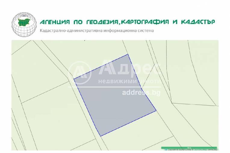 Земеделска земя, Дъбрава, 246944, Снимка 2