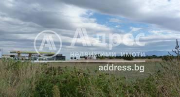 Земеделска земя, Ягодово, 312962, Снимка 1