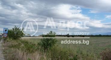 Земеделска земя, Ягодово, 312962, Снимка 3