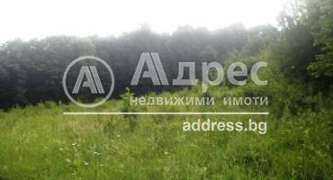 Земеделска земя, Севлиево, Митко Палаузов, 156994, Снимка 3